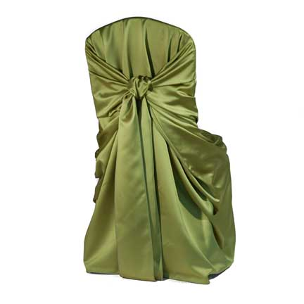 Chair Cover, Tiffany Kiwi Bag Style