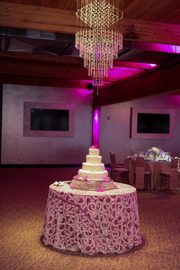 Linen effects gallery minneapolis mn event and wedding rental this junglespirit Images